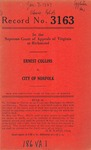 Ernest Collins v. City of Norfolk
